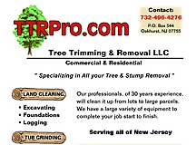 Tree Trimming & Removal LLC Web Site